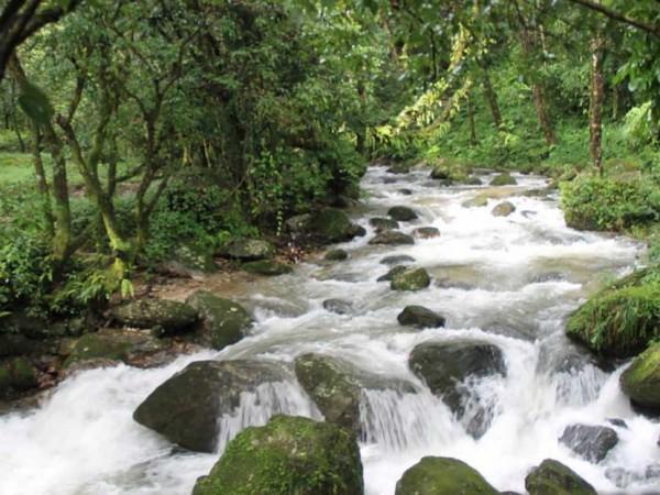 Sundarijal-Chisapani-Nagarkot | Inbound Tour | Short Trekking Packages,